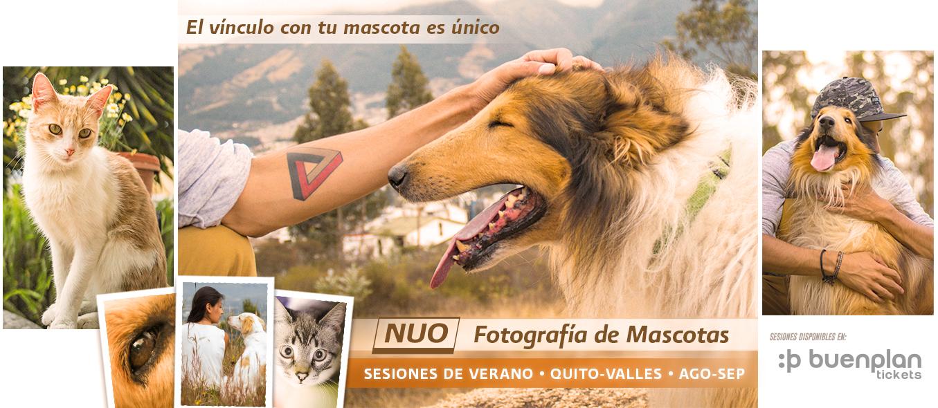 Sesión fotográfica de verano con mascotas en Quito, BuenPlan